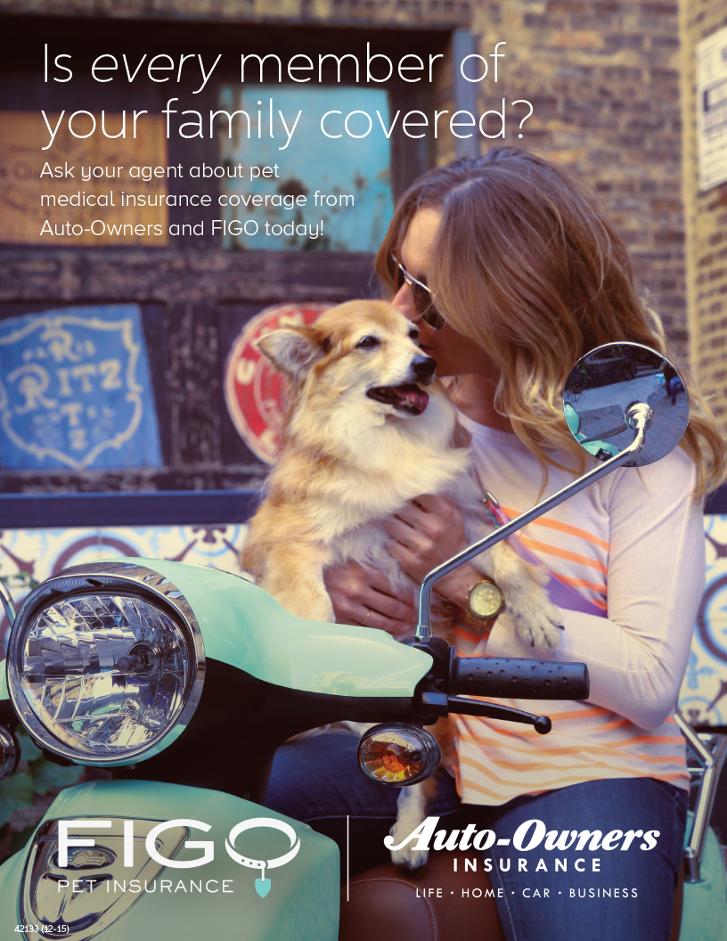 dog and owner - pet insurance from EW Smith Agency